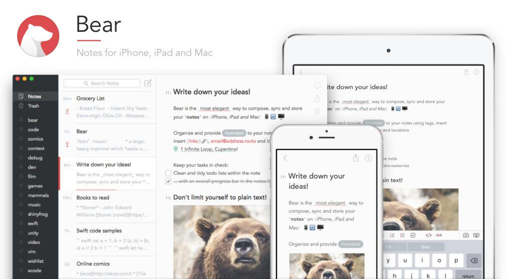 صورة لواجهة تطبيق Bear